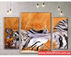 Модульные картины, животные, ART. ANIM777031