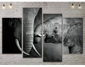 Модульные картины, животные, ART. ANIM778037