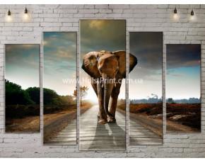 Модульные картины, животные, ART. ANIM778057