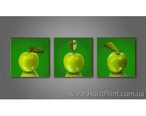 Модульные картины, Натюрморт, ART. KUM772282-3