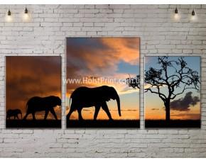Модульные картины, Пейзажи природы, ART. NATA777011