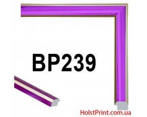 Багет пластиковый BP239 (СУПЕР ЦЕНА: 47 грн/м.п.) АКЦИЯ!