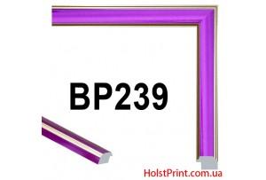 Багет пластиковый BP239 (СУПЕР ЦЕНА: 57 грн/м.п.) АКЦИЯ!