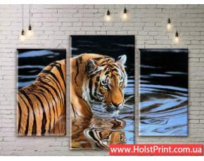 Модульные картины, животные, ART. ANIM777055