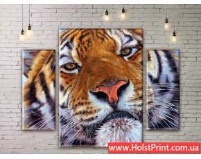 Модульные картины, животные, ART. ANIM777073