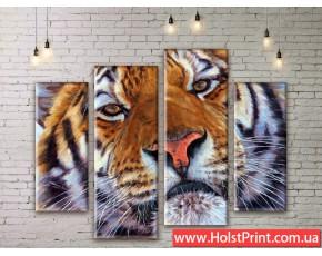 Модульные картины, животные, ART. ANIM777075