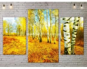Модульные картины, Пейзажи природы, ART. NATA777023