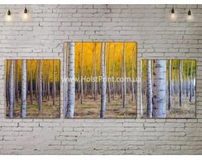 Модульные картины, Пейзажи природы, ART. NATA777025
